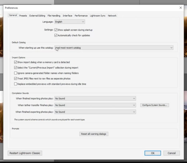 Lightroom Preferences Dialog Box