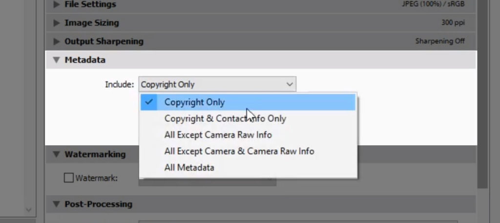 Lightroom copyright export settings for print copy 07